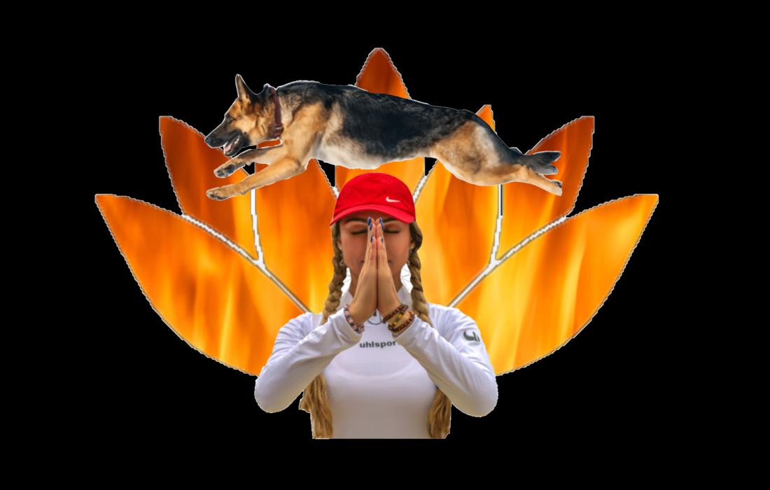 مریم نوفرستی؛ ترویج یوگا، بی حجابی و سگ بازی در یک پکیج تبلیغی